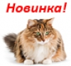 AGEING(Для кошек старше 12 лет)