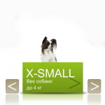 X-Small